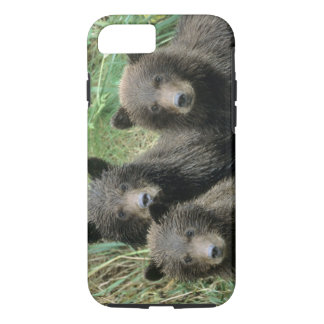 Three Grizzly Bear Cubs or Coys (Cub of the iPhone 7 Case