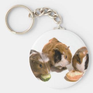 three guinea pigs who eat, llavero redondo tipo pin