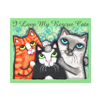 Three Happy Cats Wrapped Canvas Canvas Print