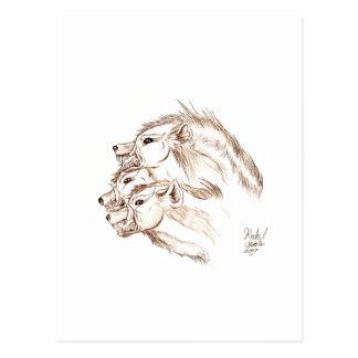 Three headed Hyena Postcard