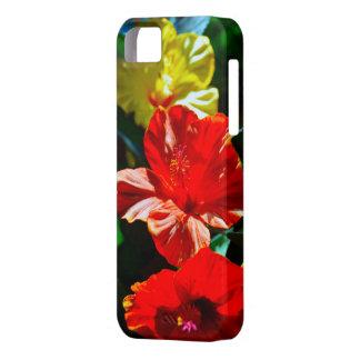 Three Hibiscus Flowers iPhone 5 Covers