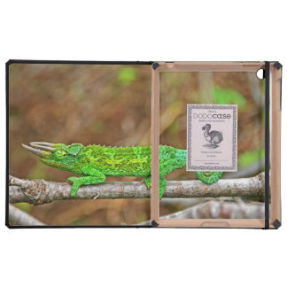Three Horned Chameleon iPad Folio Case