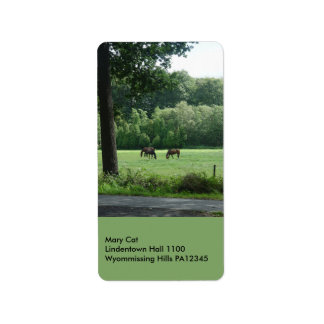 Three Horses Address Label