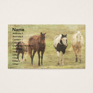 Three Horses and A Pony Business Card