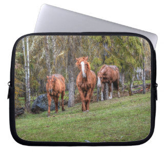 Three Horses Chestnut and Duns Equine Photo Forest Computer Sleeve