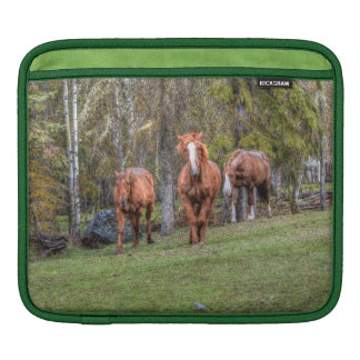 Three Horses Chestnut and Duns Equine Photo Sleeve For iPads