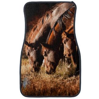Three horses drinking in dusky light car mat