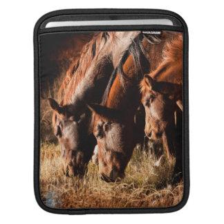 Three horses drinking in dusky light iPad sleeve