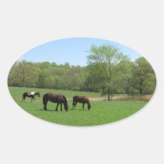 Three Horses Grazing Oval Sticker