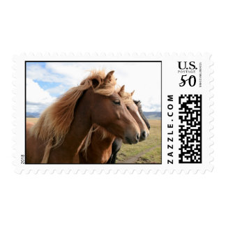 Three horses in a row Postage