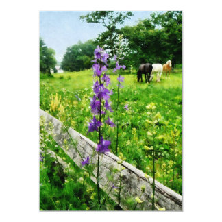 Three Horses in Distance Card