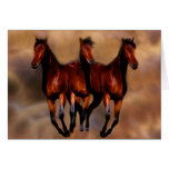 Three horses in one card
