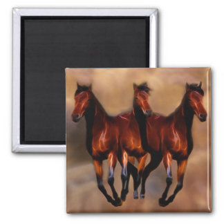 Three horses in one refrigerator magnet
