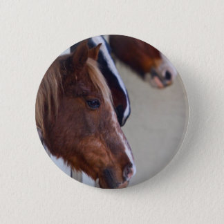Three Horses in Stables Button Badge