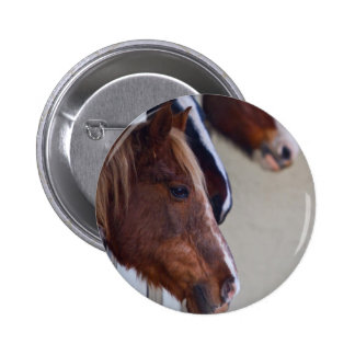 Three Horses in Stables Button Badge Pin