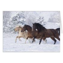 Three Horses Run in the Snow Greeting Card