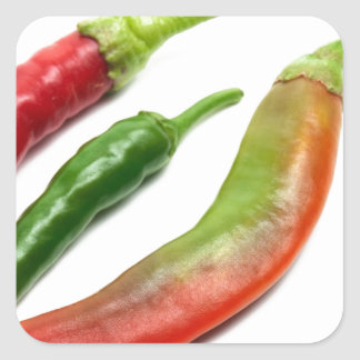 Three hot peppers square sticker