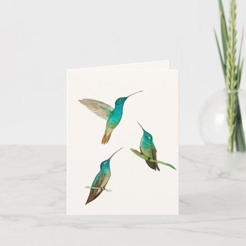 Three Hummingbirds Greeting Card