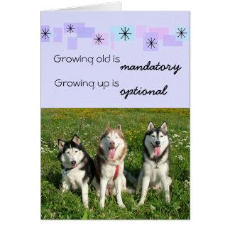 Three Huskies Birthday Card