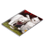 Three Jolly Kittens Spiral Notebook