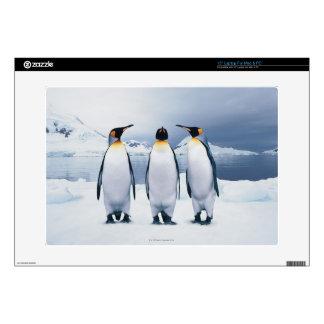 """Three King Penguins 15"""" Laptop Skin"""