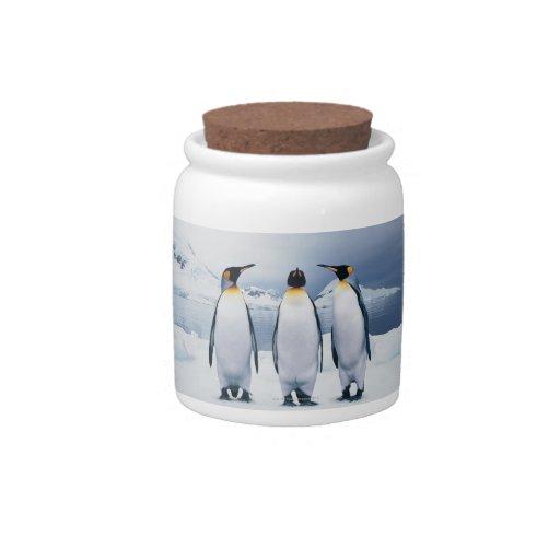 Three King Penguins Candy Jars