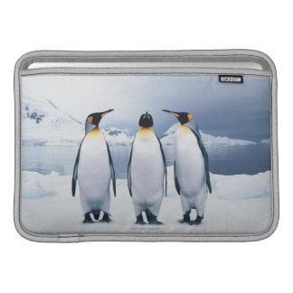 Three King Penguins MacBook Sleeve