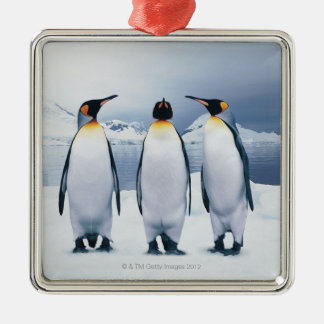 Three King Penguins Metal Ornament