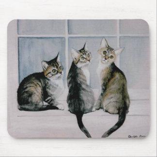 Three Kitten Original Art Mouse Pad