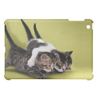 Three kittens hugging each other iPad mini cases