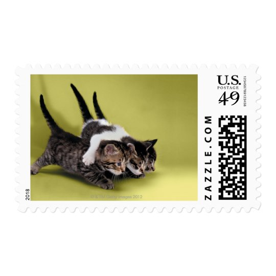 Three kittens hugging each other postage