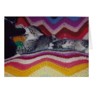 Three Kittens on a Rainbow Blanket Card