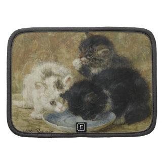 Three kittens organizer