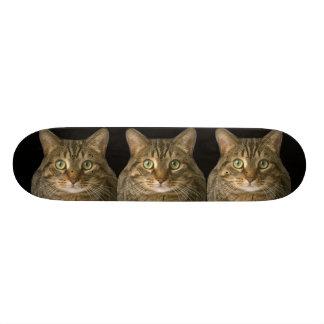 Three kitties skateboard deck