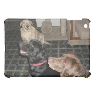 three labradors iPad mini cases