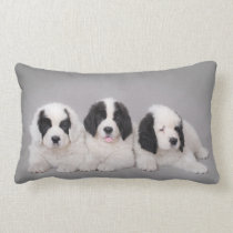 Three Landseer puppies Lumbar Pillow