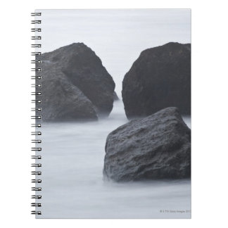 Three large boulders on Ruby Beach, Olympic Notebook