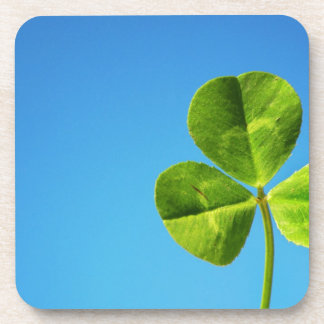 three leaved clover beverage coaster