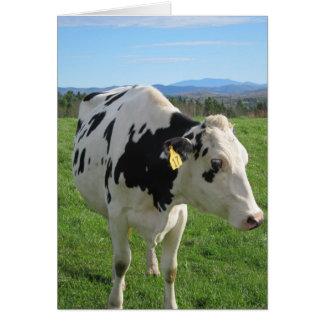 Three Legged Cow 5x7 Greeting Card