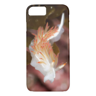 Three-Lined Aeolid iPhone/iPod Touch Case