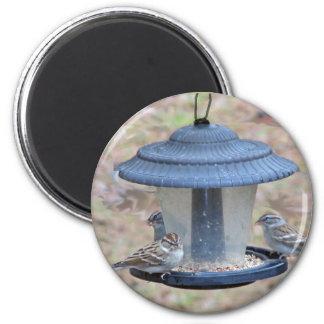 Three Little Birds Magnet