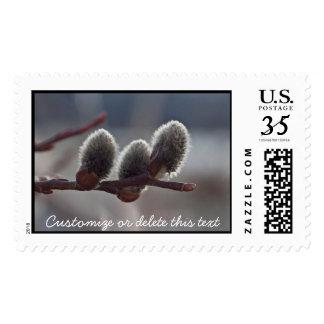Three Little Catkins; Customizable Postage