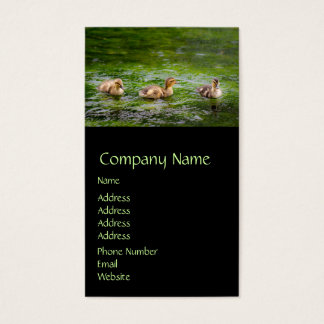 Three Little Ducklings Ducks Business Card