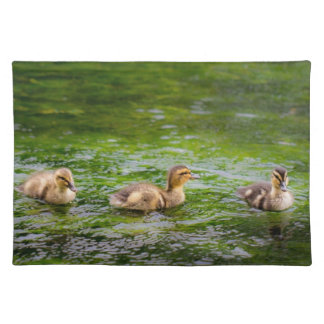 Three Little Ducklings Ducks Cloth Placemat