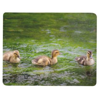 Three Little Ducklings Ducks Journal