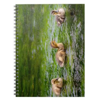 Three Little Ducklings Ducks Spiral Note Book
