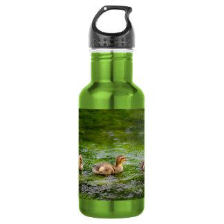 Three Little Ducklings Ducks Water Bottle