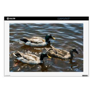 Three Little Ducks Laptop Decals