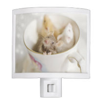 Three little mice siting in cup night light