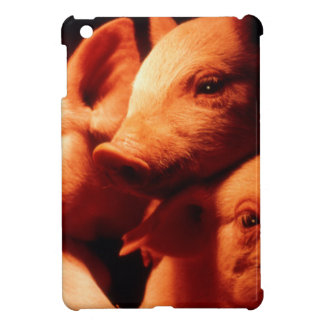 Three Little Pigs Cover For The iPad Mini